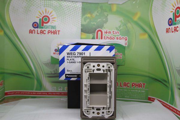 Mặt 1 thiết bị có nắp che mưa WEG7901